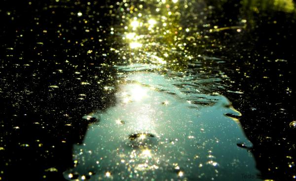 Reflets dans la glace