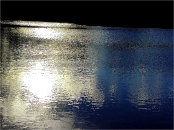 Reflets dans un étang