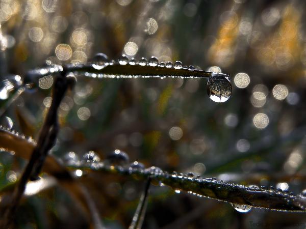 Scintillement des gouttes de pluie
