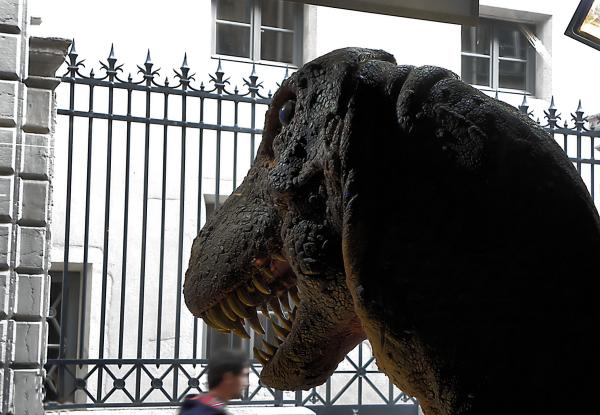 Jurassic  park...