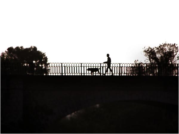 Promenade  dominicale...