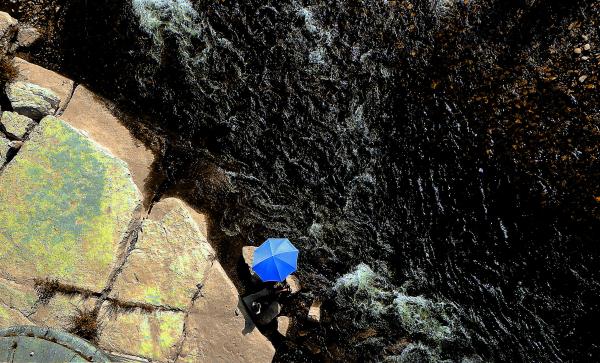 Le parasol bleu