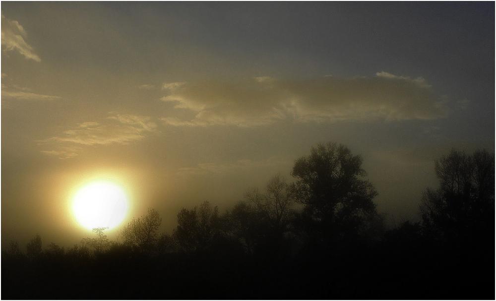 Aurore dans la brume