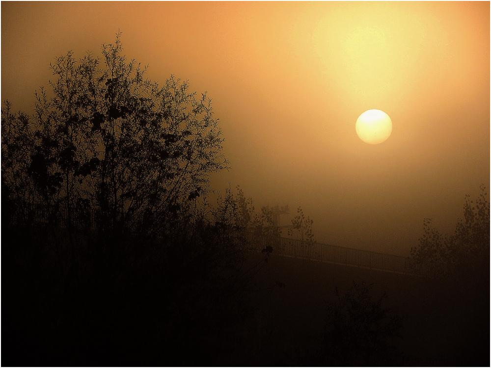 Soleil et brume