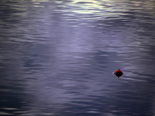 Bouchon de pêche