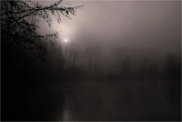 Brume et soleil sur l'étang