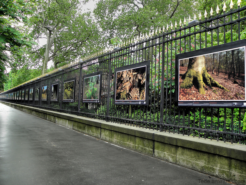 Expo photos au jardin du Luxembourg Paris