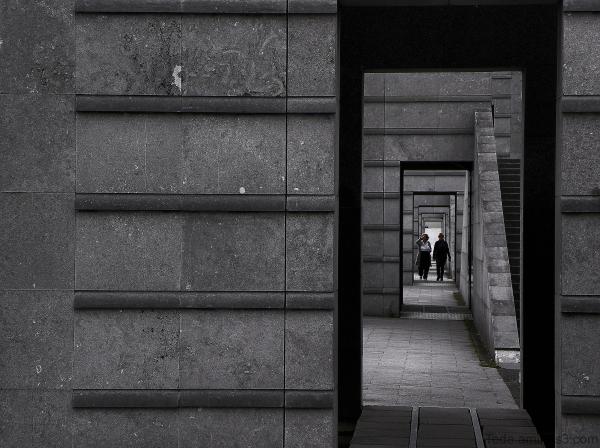 Le  labyrinthe  de  la  solitude...