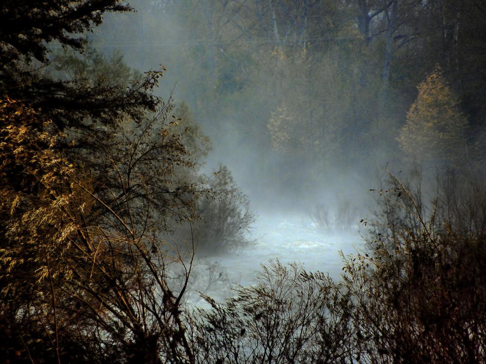 Rivière et brume