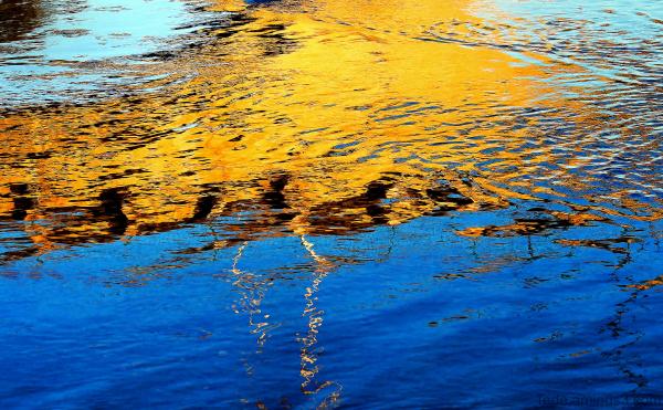 Reflets sur la rivière