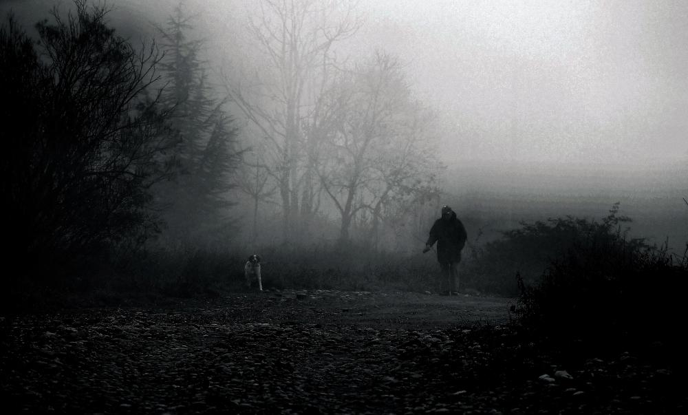 Balade matinale dans la brume