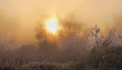 Autumn morning...