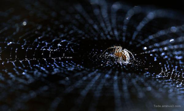 Black hole...
