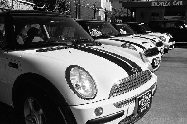 Monza Minis