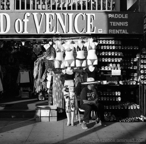D of Venice