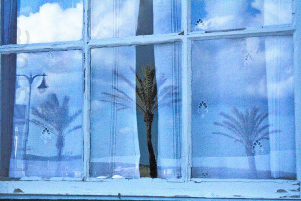 las tres palmeras