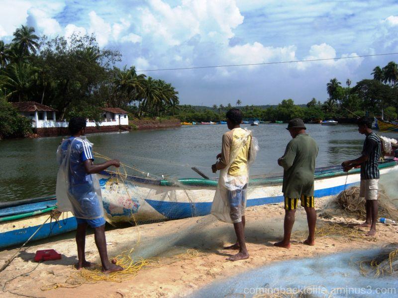 the fishermen's cove