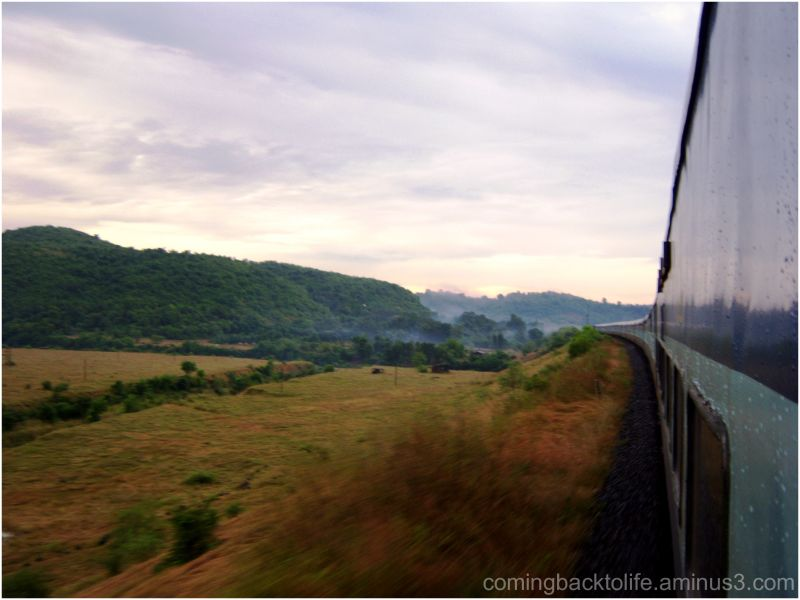 the morning train