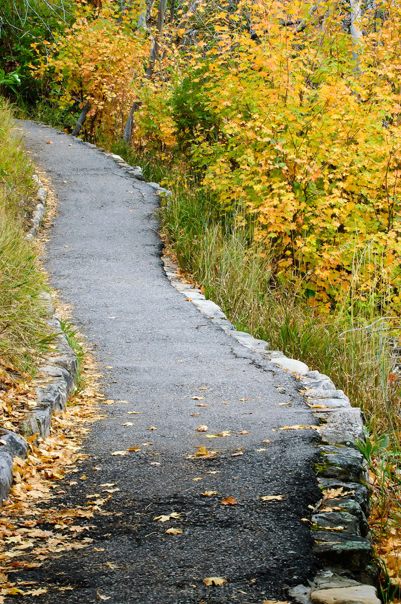 Take a Stroll