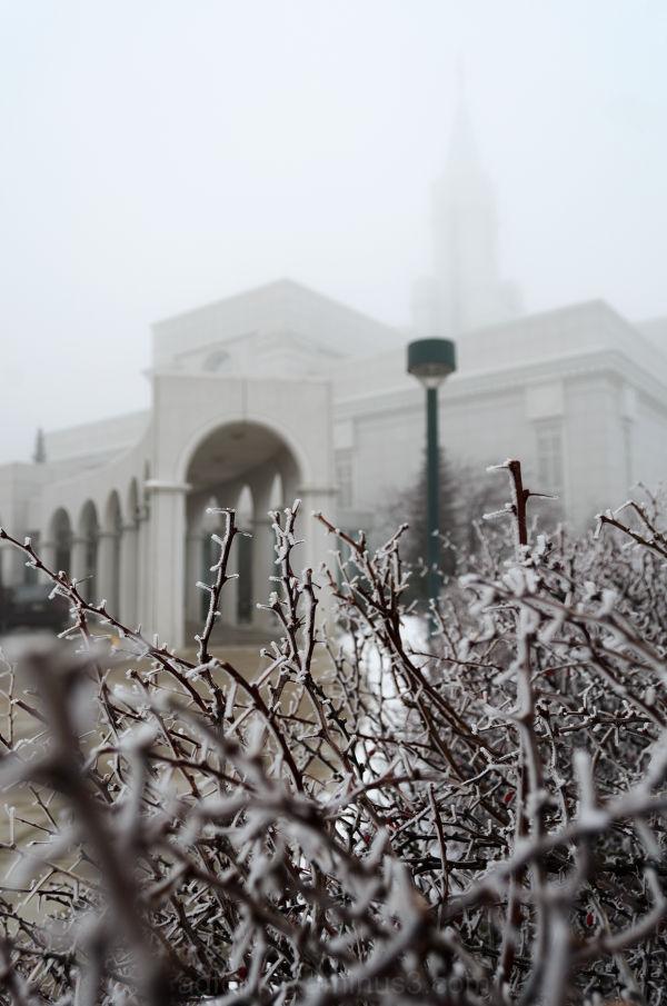 Frost & Fog at Bountiful Utah LDS Mormon Temple
