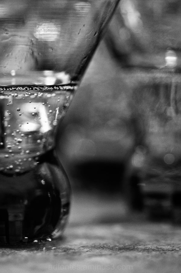 Sparkling Cider Bubbly B&W Still Life on Counter
