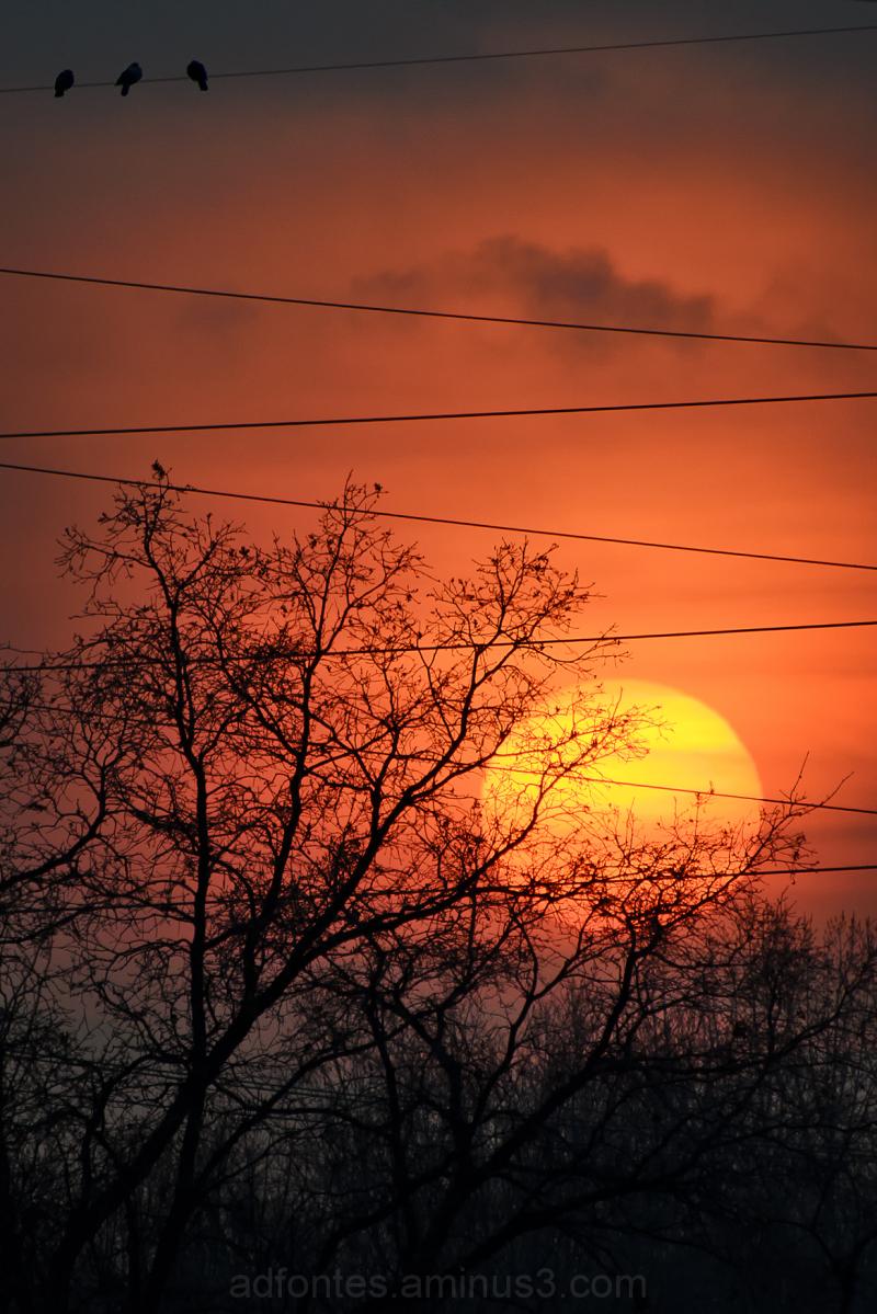 December Sun Setting