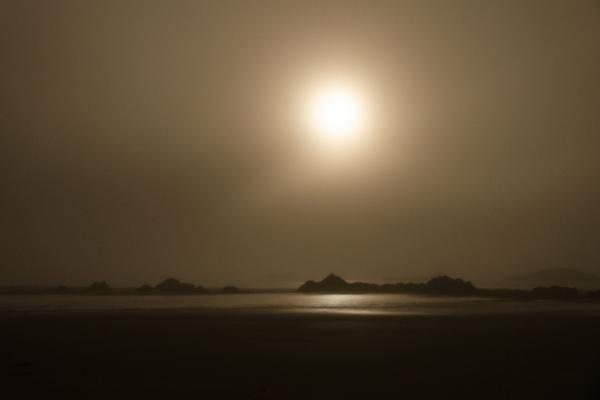 Misty moonlit beach on the central Oregon coast