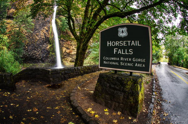 Horsetail Falls in the Autumn Rain in the Gorge OR