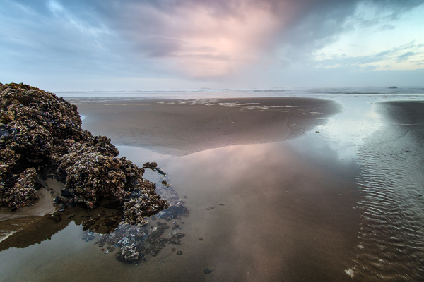Sunrise colors reflect in a glassy tidepool in OR
