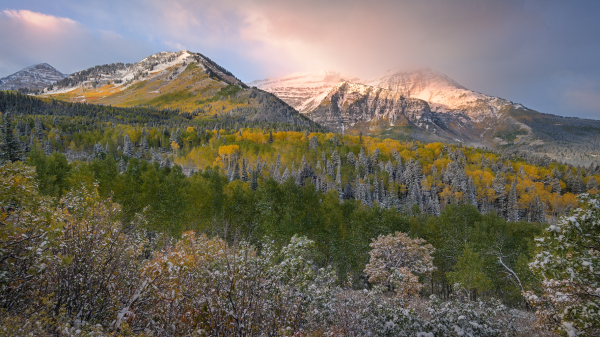 Sunrise after snow falls on fall colors