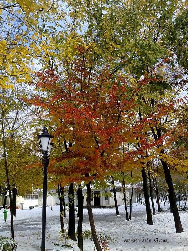 پاییز 1390