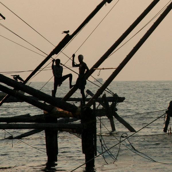 chinese nets, Cochin