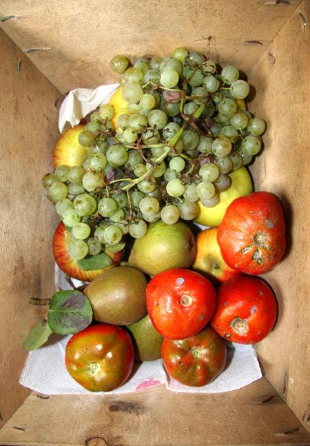 nature morte fruits