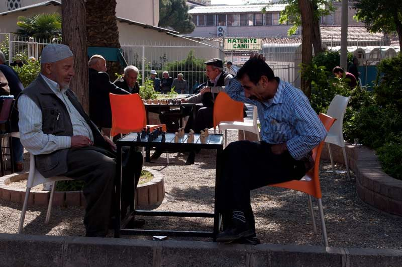 a game in a tea garden