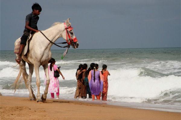 inde plage cheval