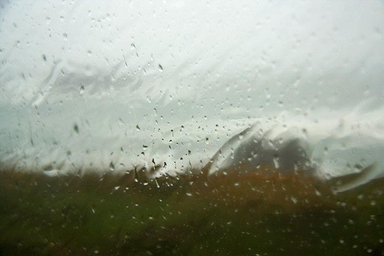 pluie  vent herbe vitre
