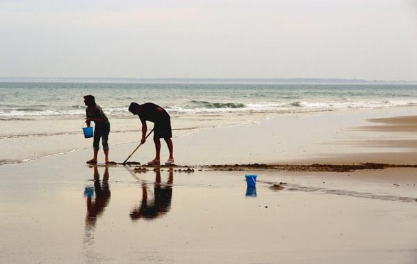 les seaux bleux / last fishing