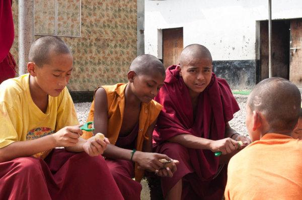 Jeunes moines / Young monks
