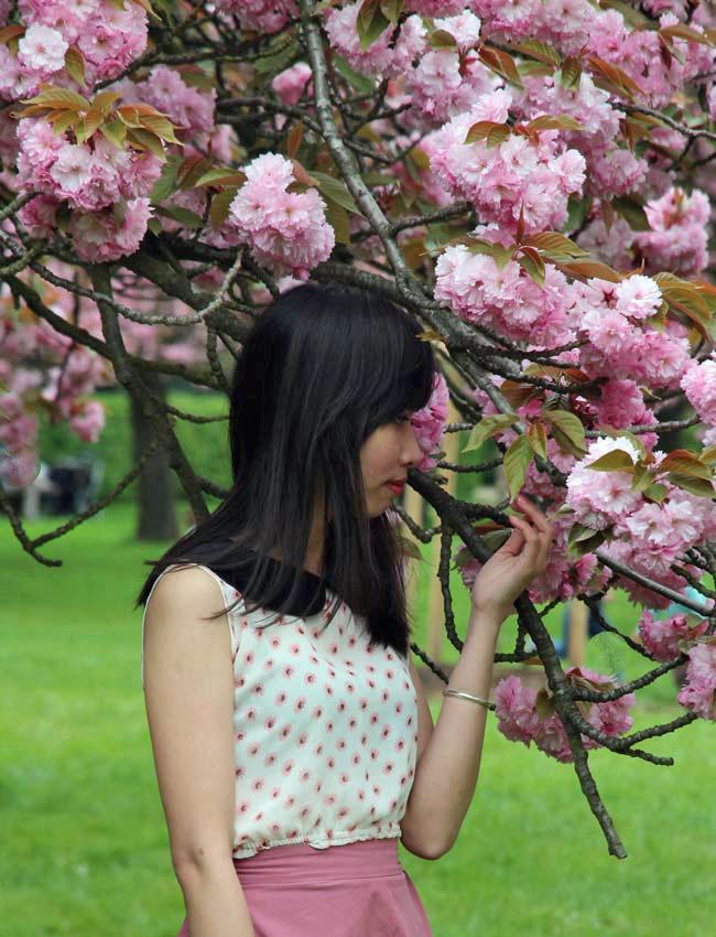 la vie en rose / spring is coming