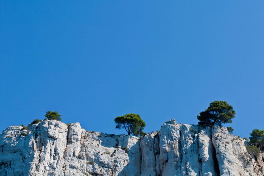 Sur le roc  / On the rocks