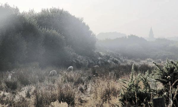 vallon dans la brume /september mist