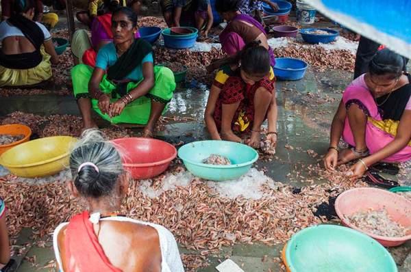 Femmes au travail  /  Women at work