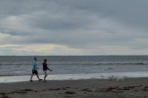 Promenade en famille /  Family walk