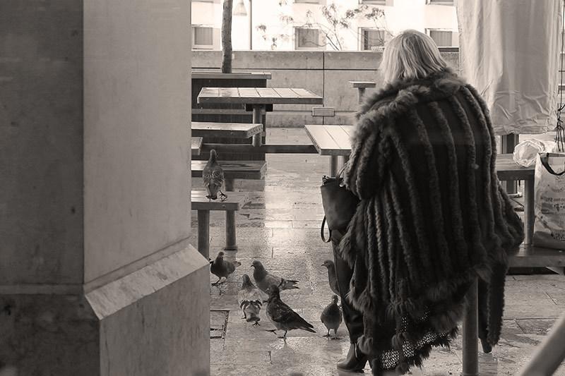 La dame aux pigeons / The pigeons ' lady