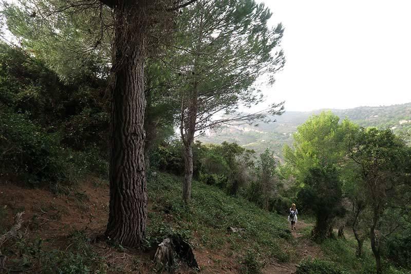 Balade / Walk