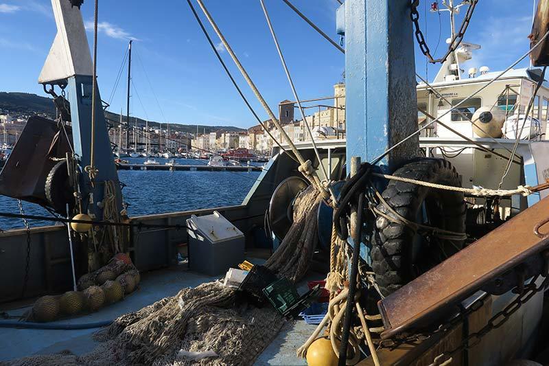 Prêt pour la pêche / Ready foshing