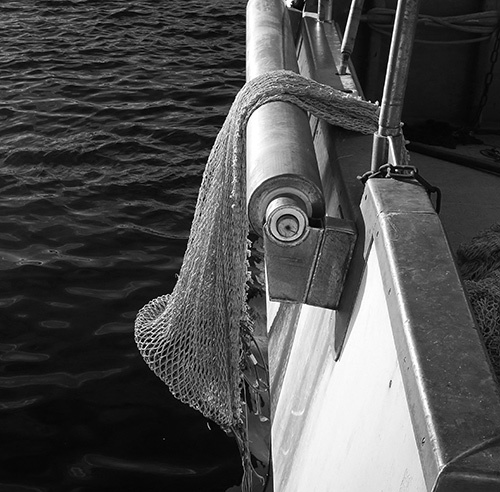 Filet / Fishing net