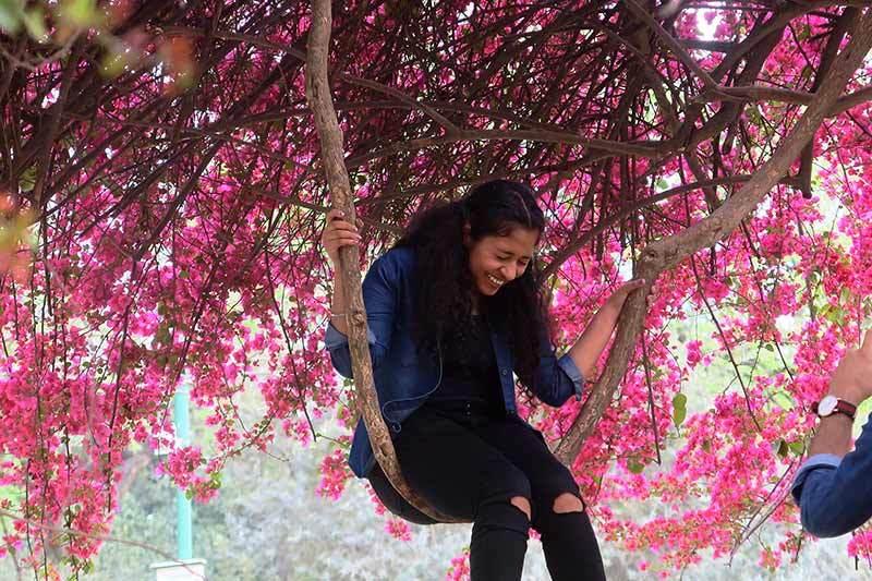 Une demoiselle sur une balançoire / On the swing