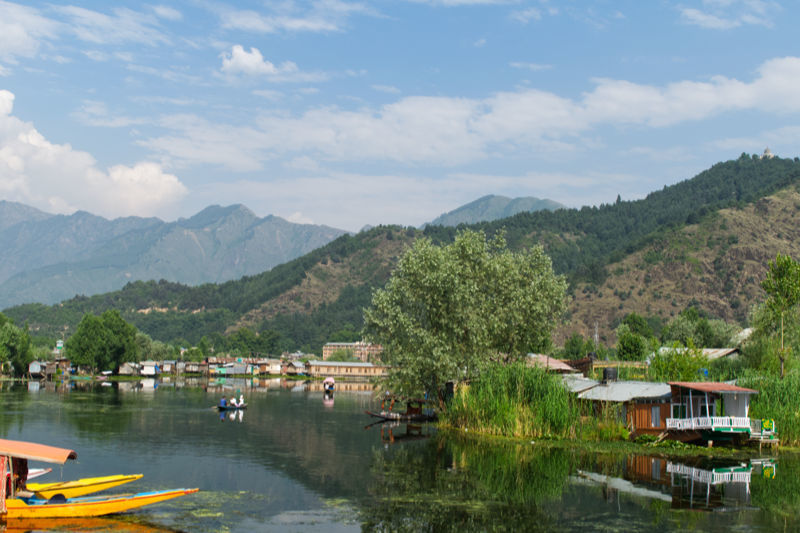 Souvenirs du Cashemire / Kashmir's memories 6