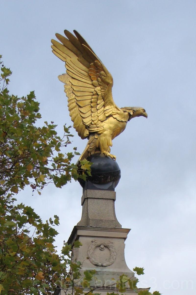Golden Eagle on Thames